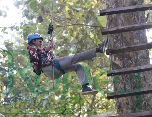 Alternative youth development lifestyle – Adventure Course